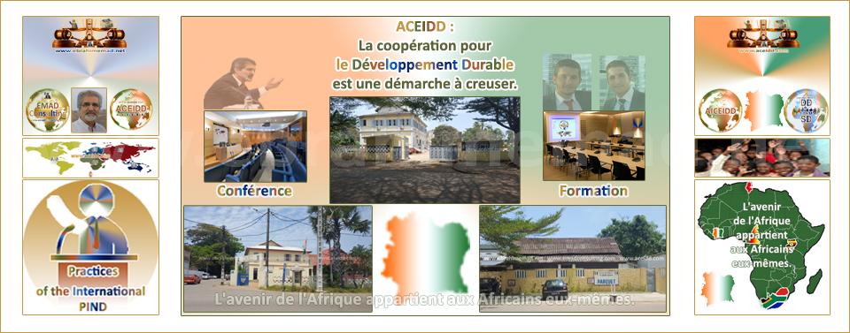 E.EMAD - EMAD Consulting, Pratiques de l'International, Conférence et Formation