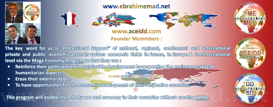 E.EMAD, EMAD Consulting et ACEIDD